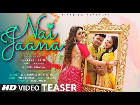 Download Nai Jaana Mp3 Song for free from pagalworld,Nai Jaana